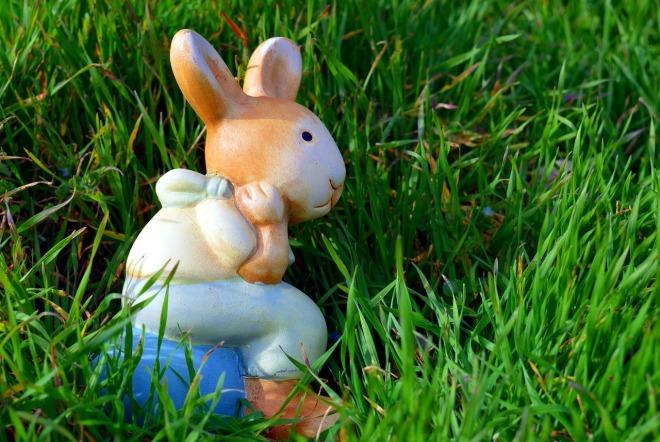 hare-2144347_1280