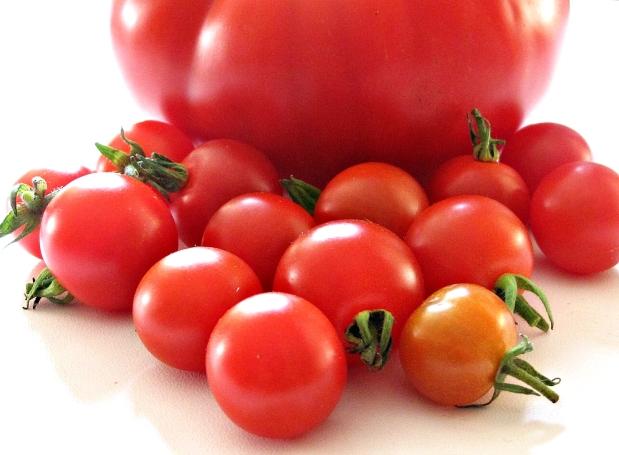 Tomaten, Tomaten und nochmalsTomaten